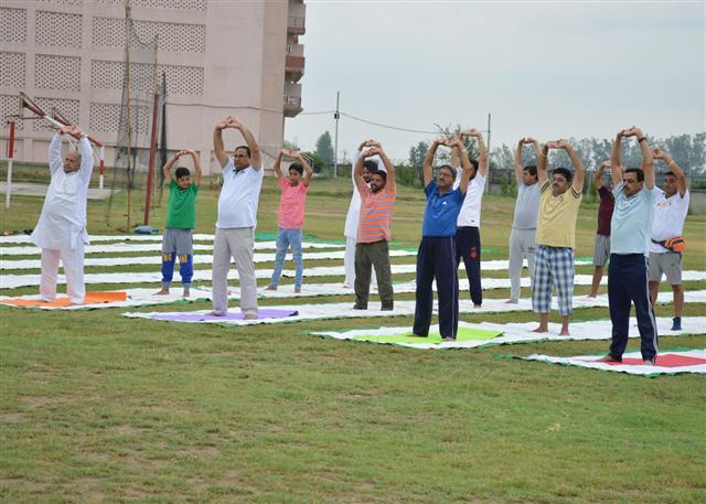 DAV University observes International Day of Yoga